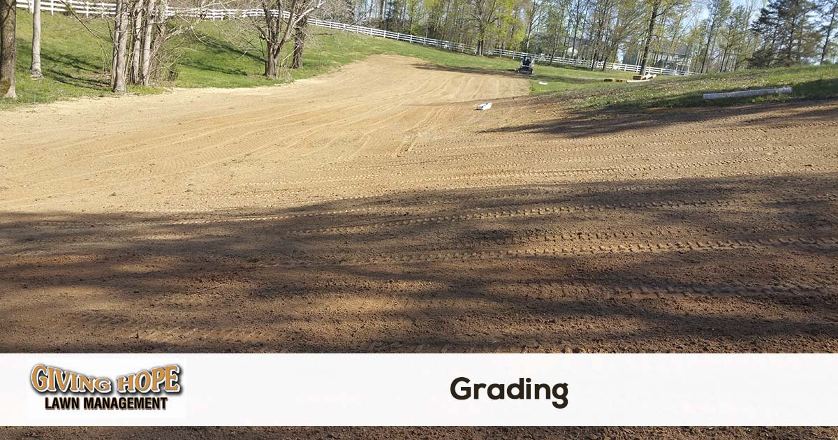 finish grading and sod installation