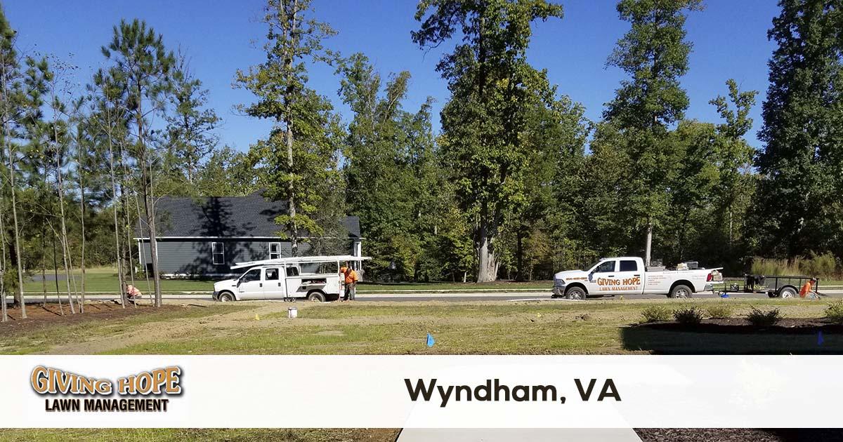 Wyndham lawn service