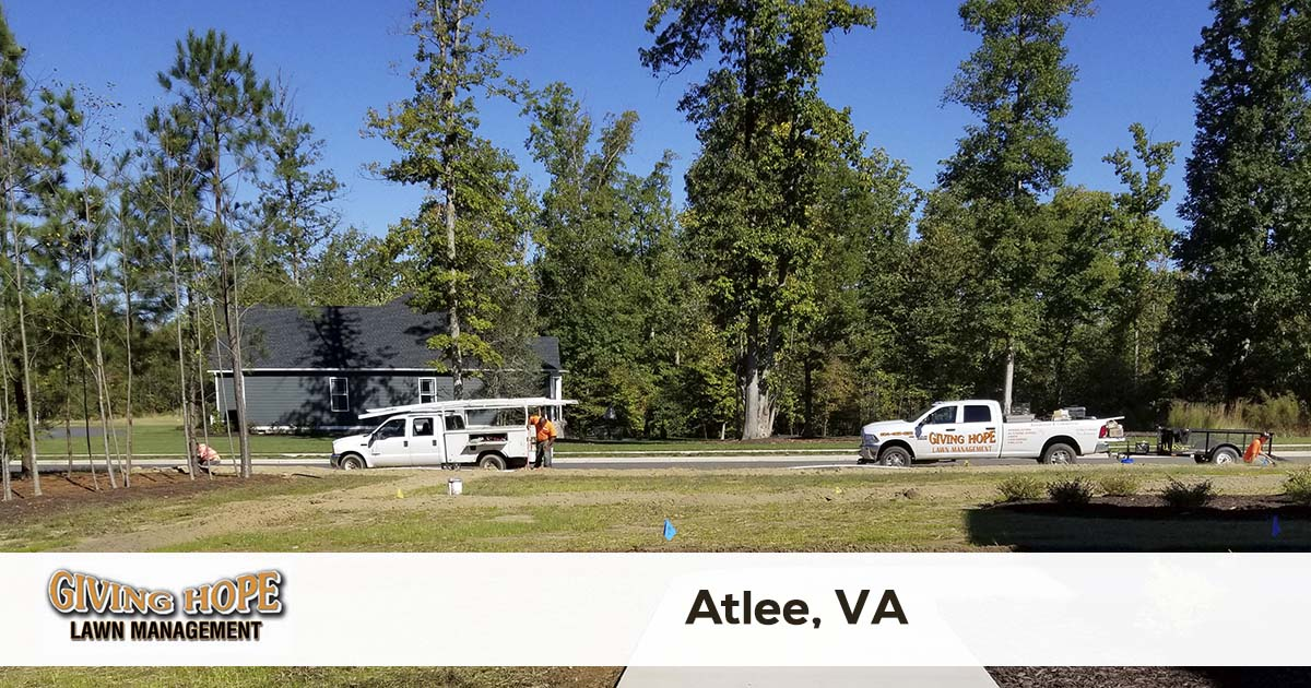 Atlee lawn service