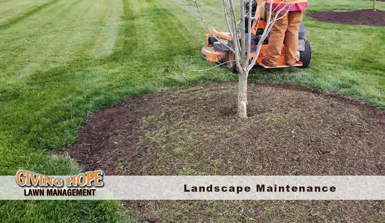 landscape maintenance company