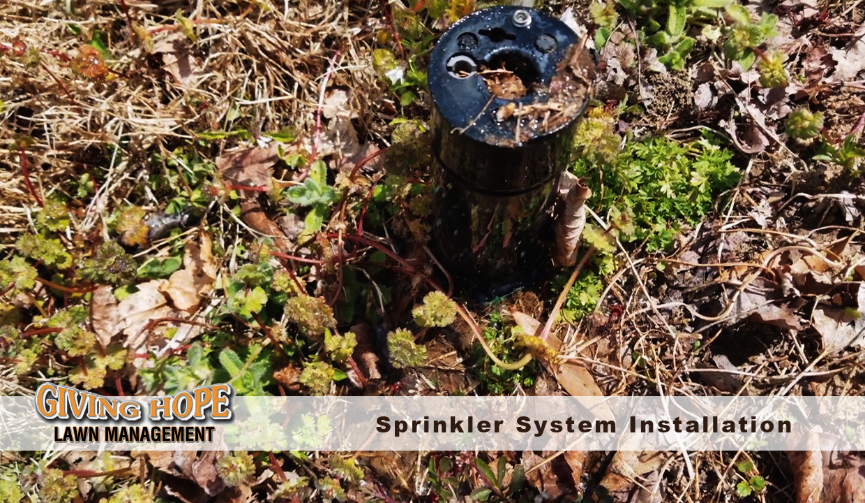 Irrigation system design & installation