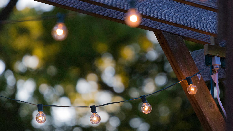 Bilde av lyslenke i hage.