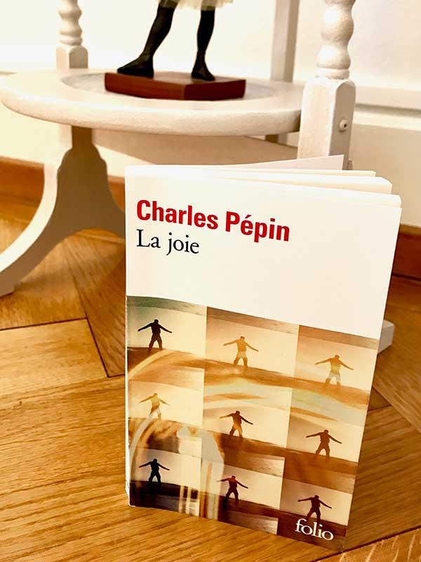 Blog Littéraire - La joie de Charles Pépin - Suivre sa Joie - Saskia Parein