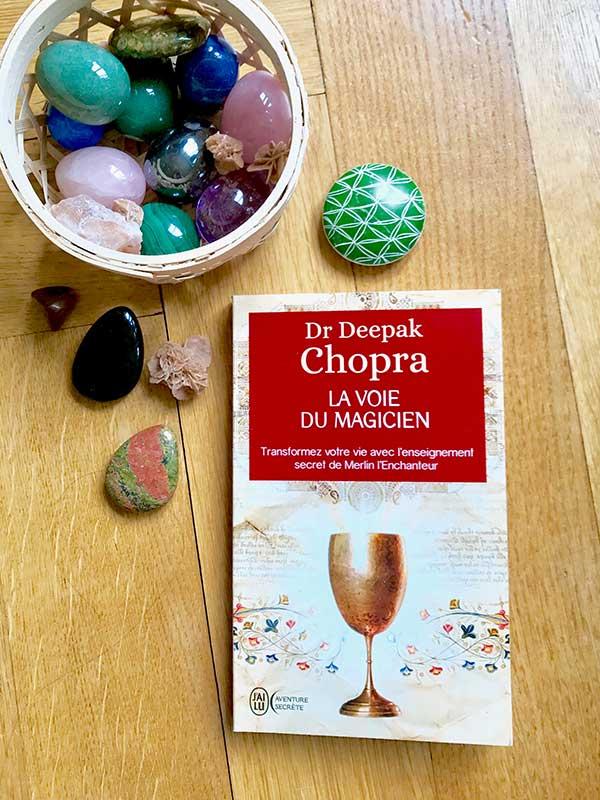 Blog Littéraire - La voie du magicien de Dr Deepak Chopra - Suivre sa Joie - Saskia Parein