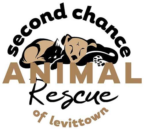 Second Chance Animal Rescue - Île Maurice - Suivre sa Joie - Saskia Parein