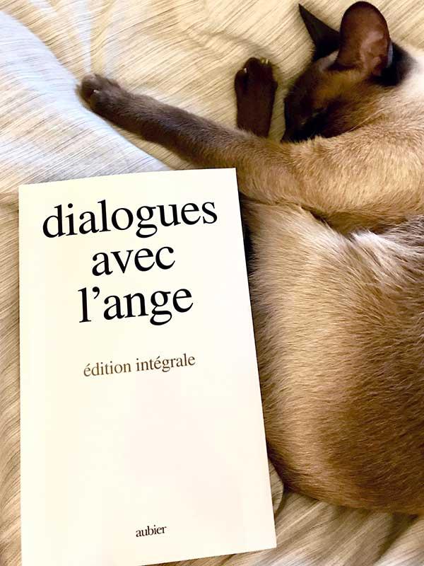 Blog Littéraire - Dialogues avec l'ange de Gitta Mallasz - Suivre sa Joie - Saskia Parein