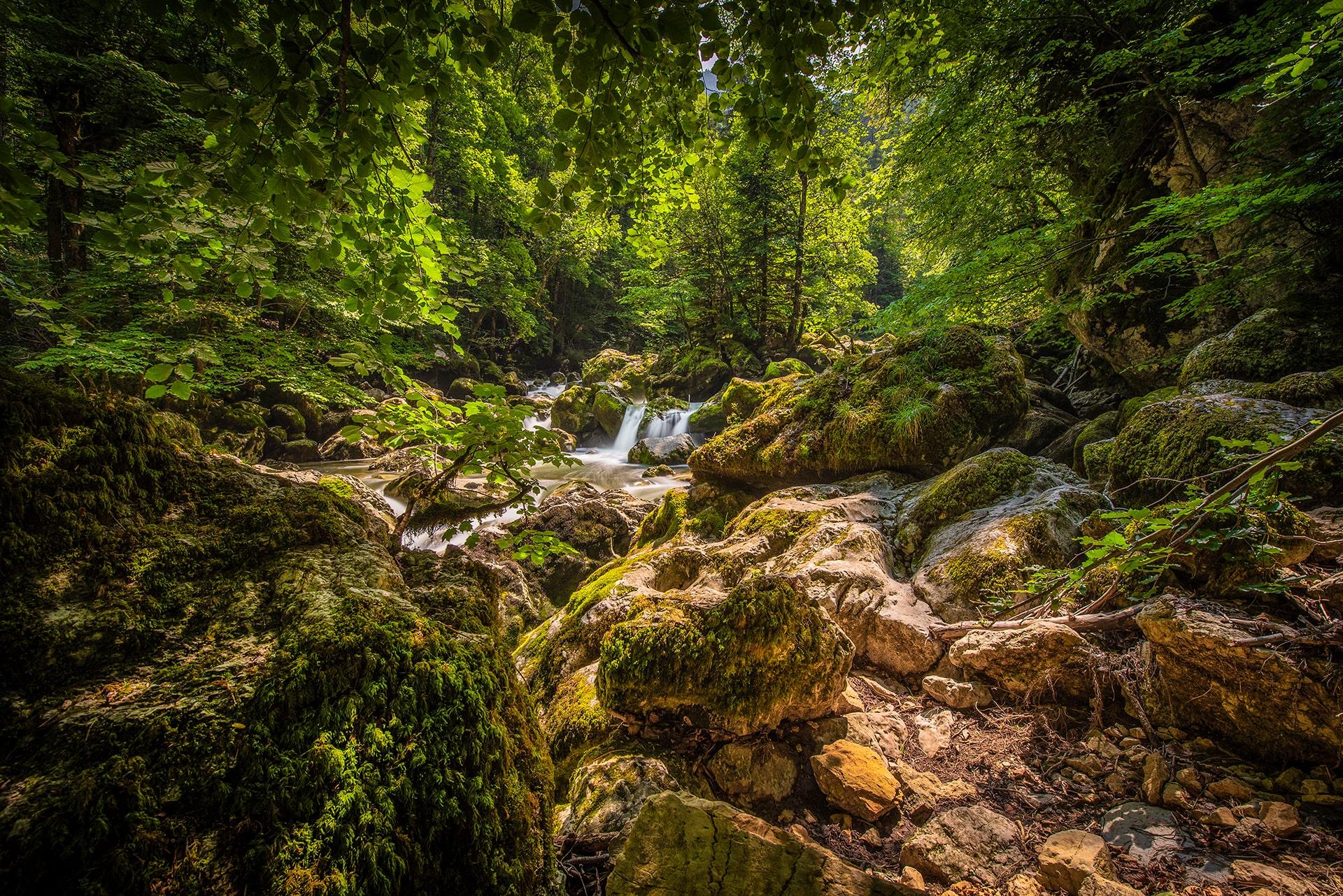 Blog Lifestyle - Promenade en plein nature suisse - Suivre sa Joie - Saskia Parein