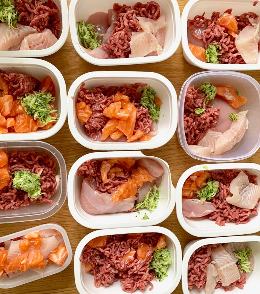 Blog Lifestyle - Les rations et la quantité de nourriture BARF selon Valérie - Suivre sa Joie - Saskia Parein