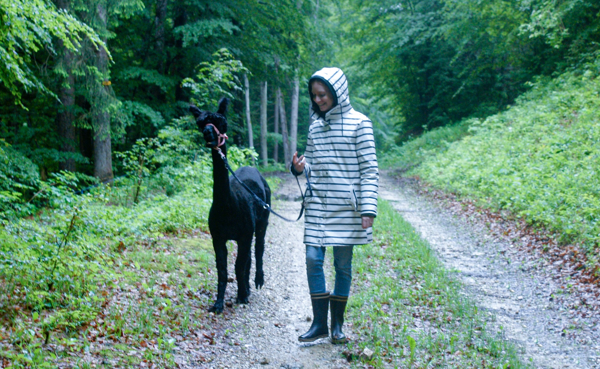 Blog Lifestyle - Une promenade hors du temps avec des lamas et alpagas - Suivre sa Joie - Saskia Parein