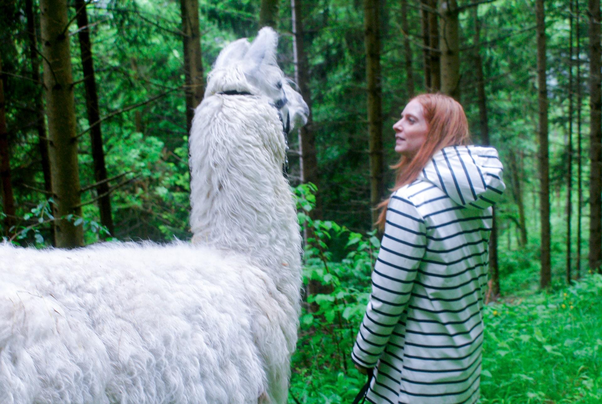 Blog Lifestyle - Merlin, le lama blanc de Lampaga - Suivre sa Joie - Saskia Parein