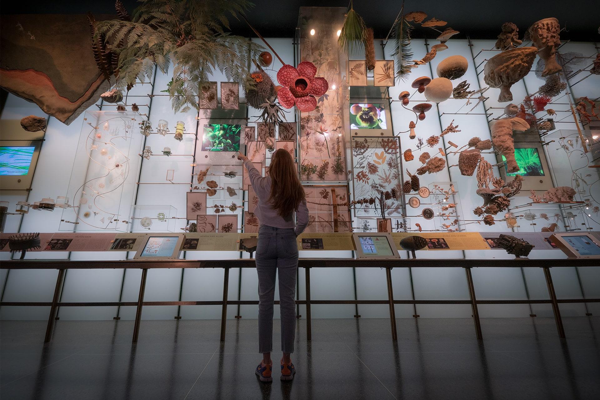 Blog Lifestyle - Les exceptionnels musées New Yorkais - Suivre sa Joie - Saskia Parein