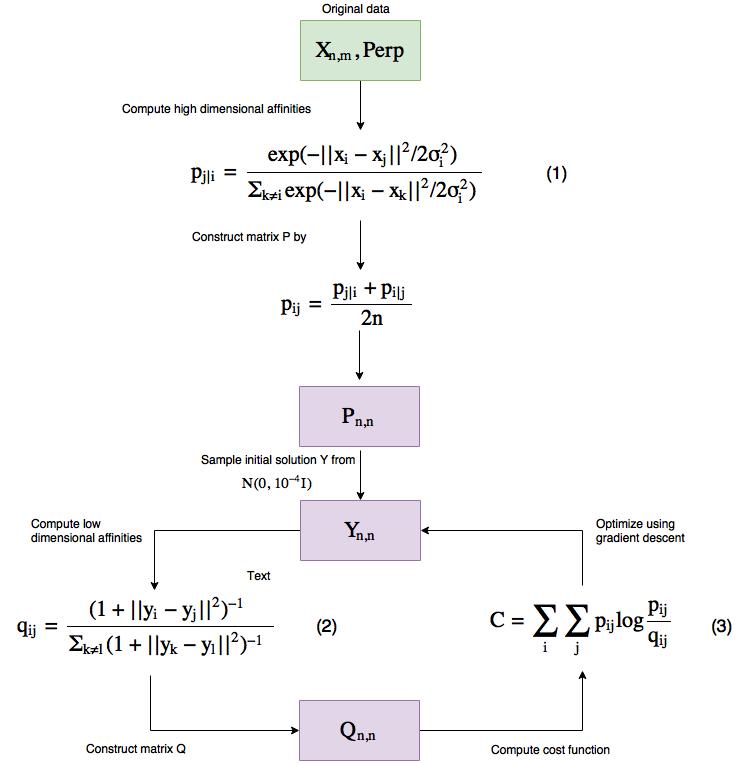 Figure 3 t-SNE workflow