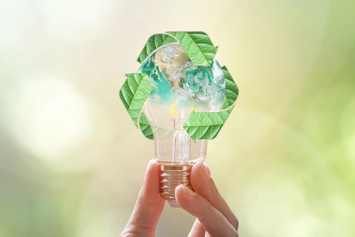 Nachhaltig und Fair