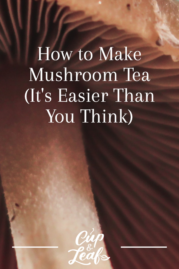 How to Make Mushroom Tea (It's Easier Than You Think) - Cup
