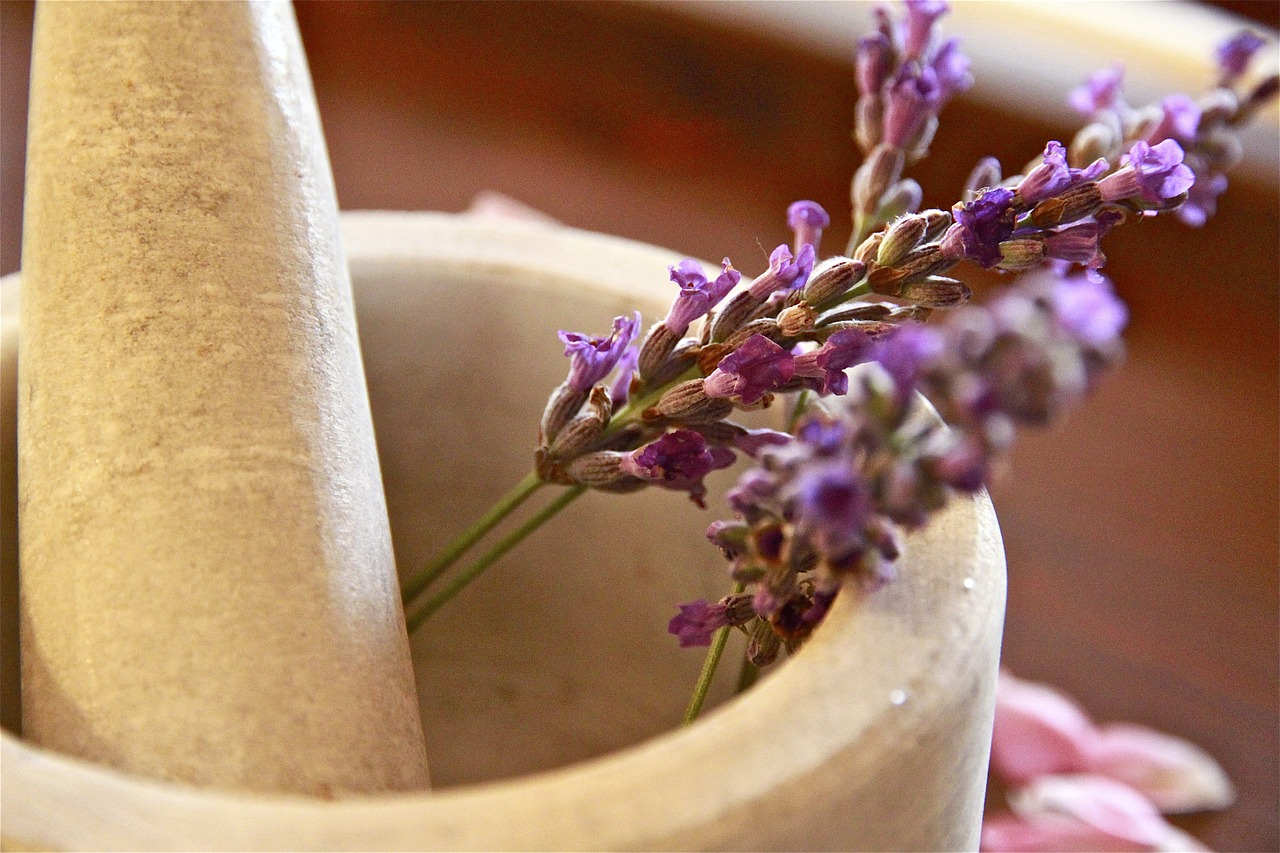 Lavender Tea Health Benefits, Side Effects, and How to Brew