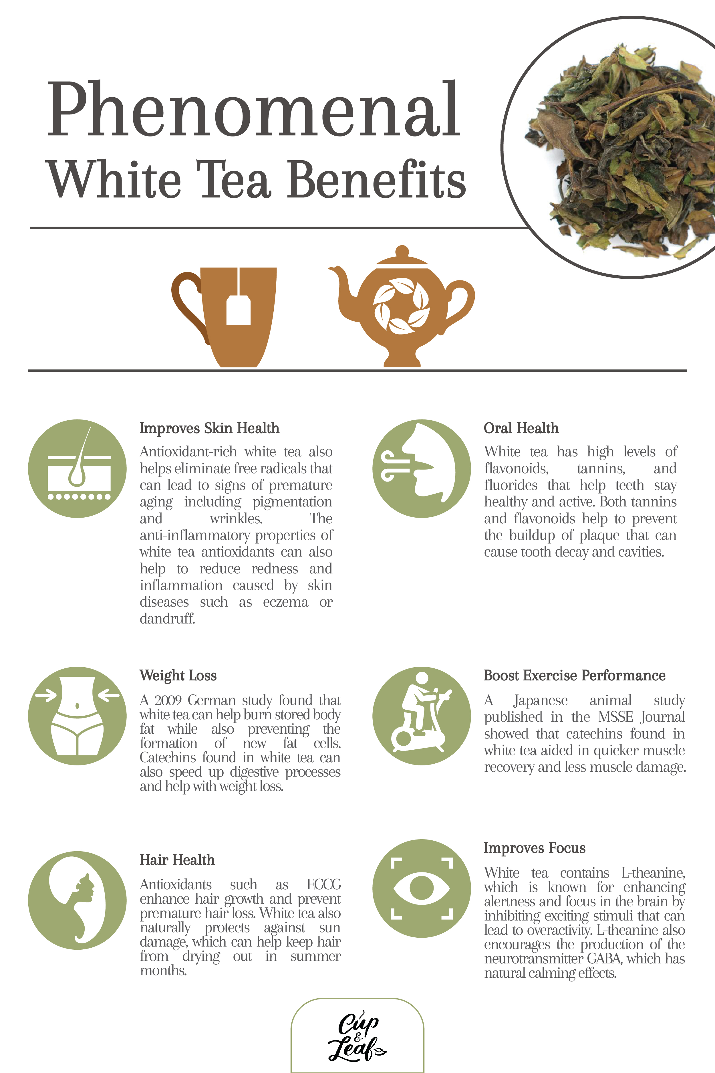 9 Phenomenal White Tea Benefits To Improve Your Health - Cup & Leaf