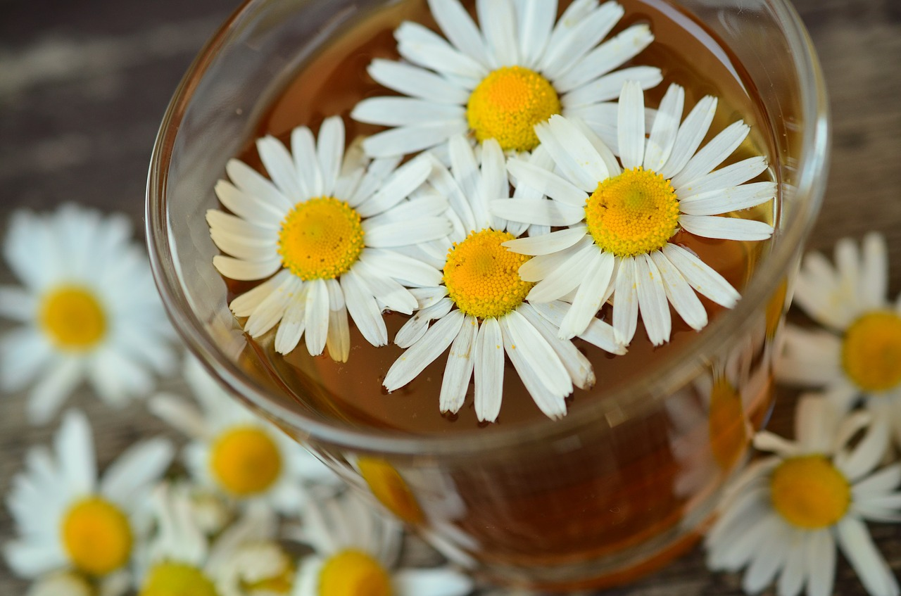 Chamomile Tea Benefits for Skin, Hair, Sleep and More - Cup