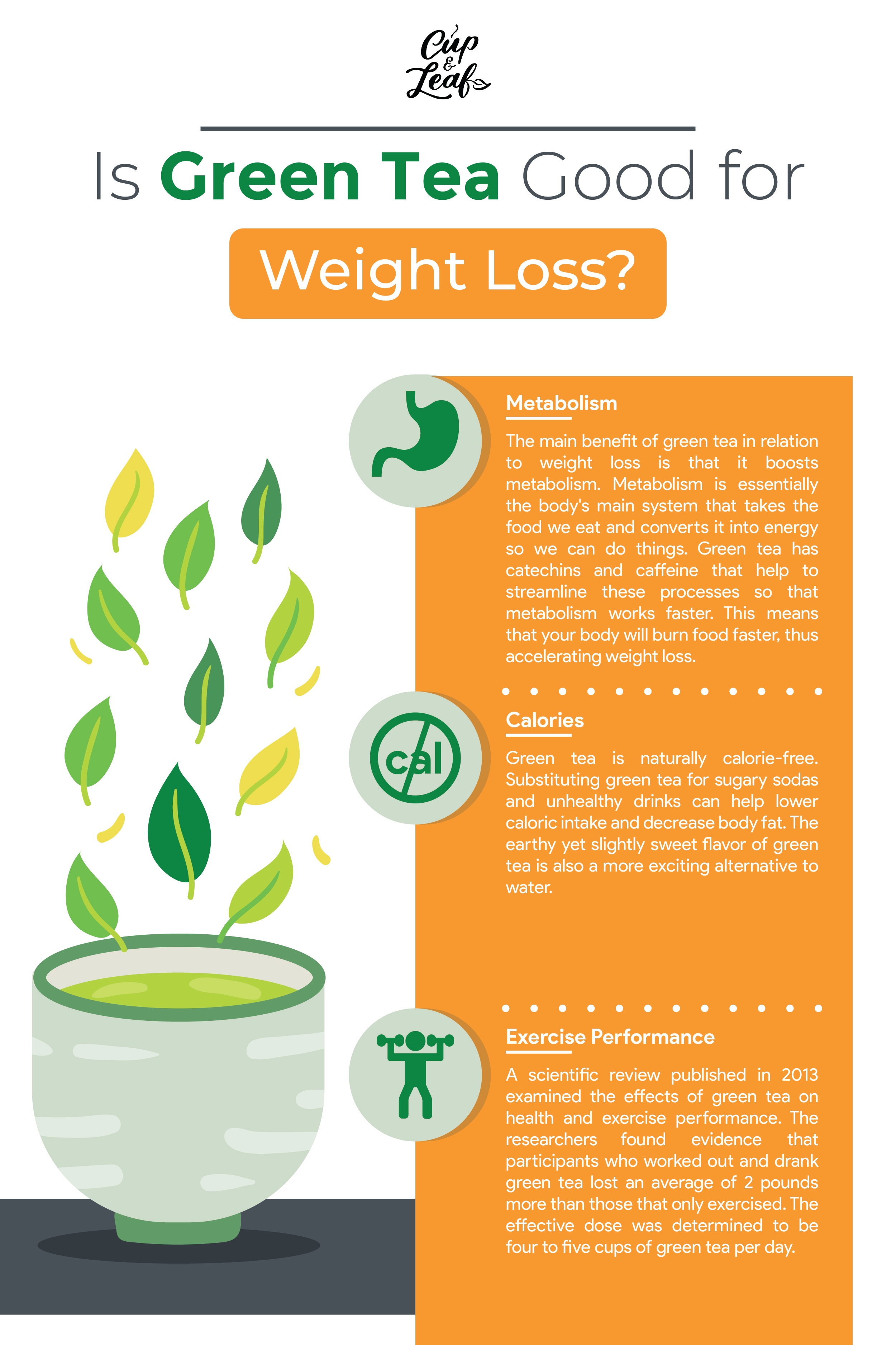 Is Green Tea Good For Weight Loss Get The Facts Cup Leaf