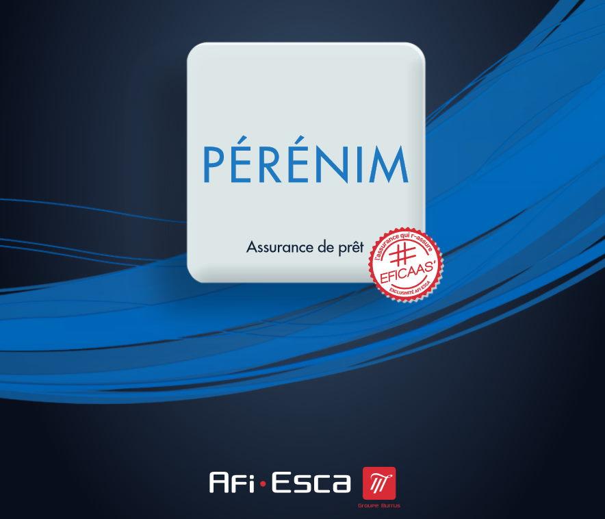 En 2019, la société Afi Esca est récompensée par le label d'excellence des « Dossiers de l'Épargne » pour son produit d'assurance emprunteur PERENIM.
