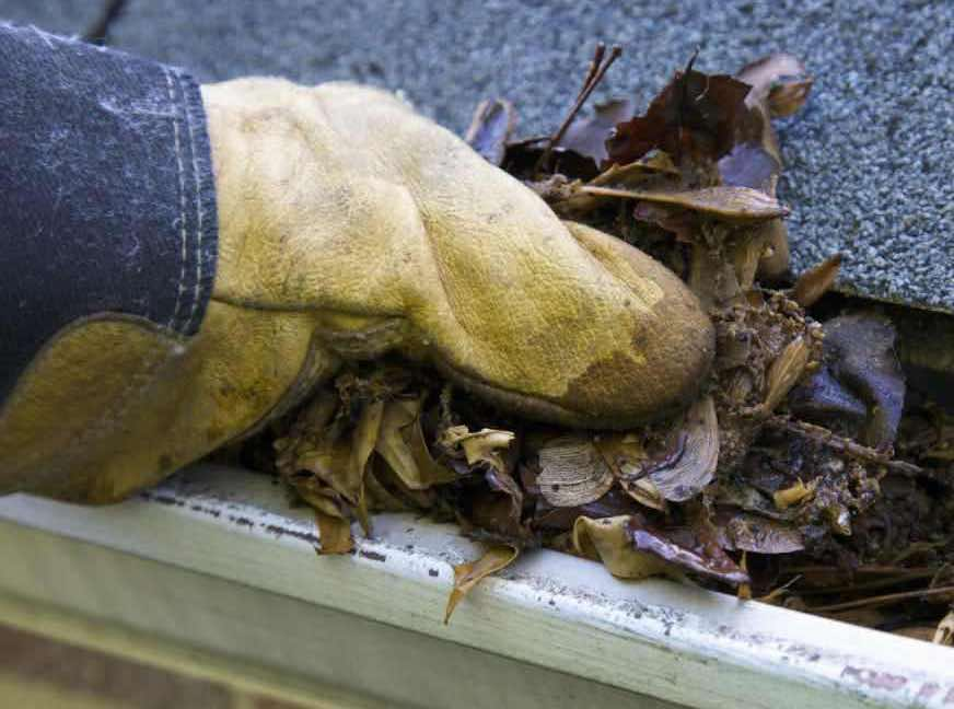Gutter Cleaning in Evansville IN