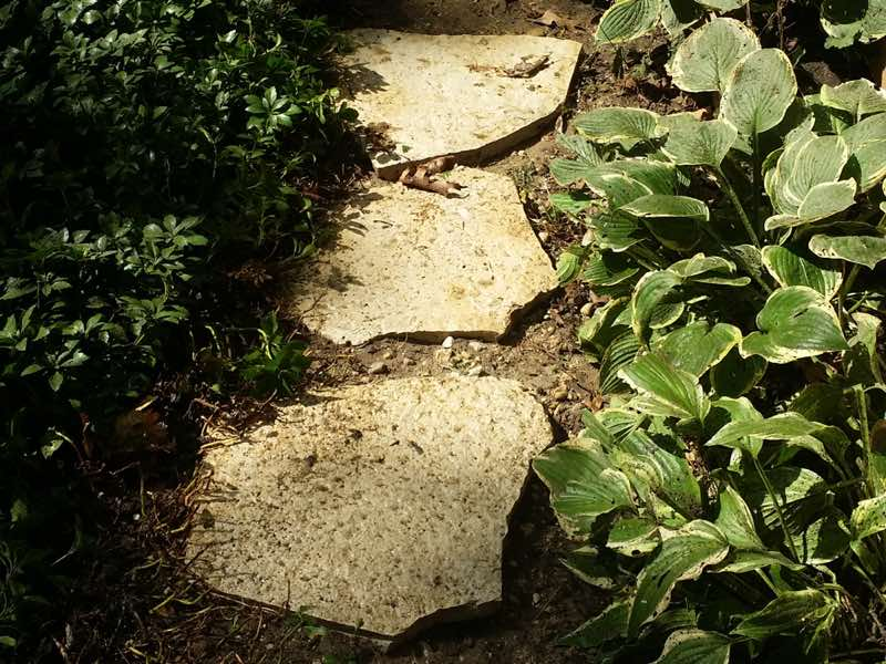 Pressure Washing rock pathway in Rockford IL