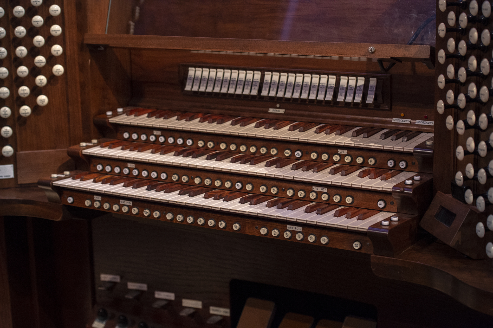 Franciscan University of Steubenville student organ recital