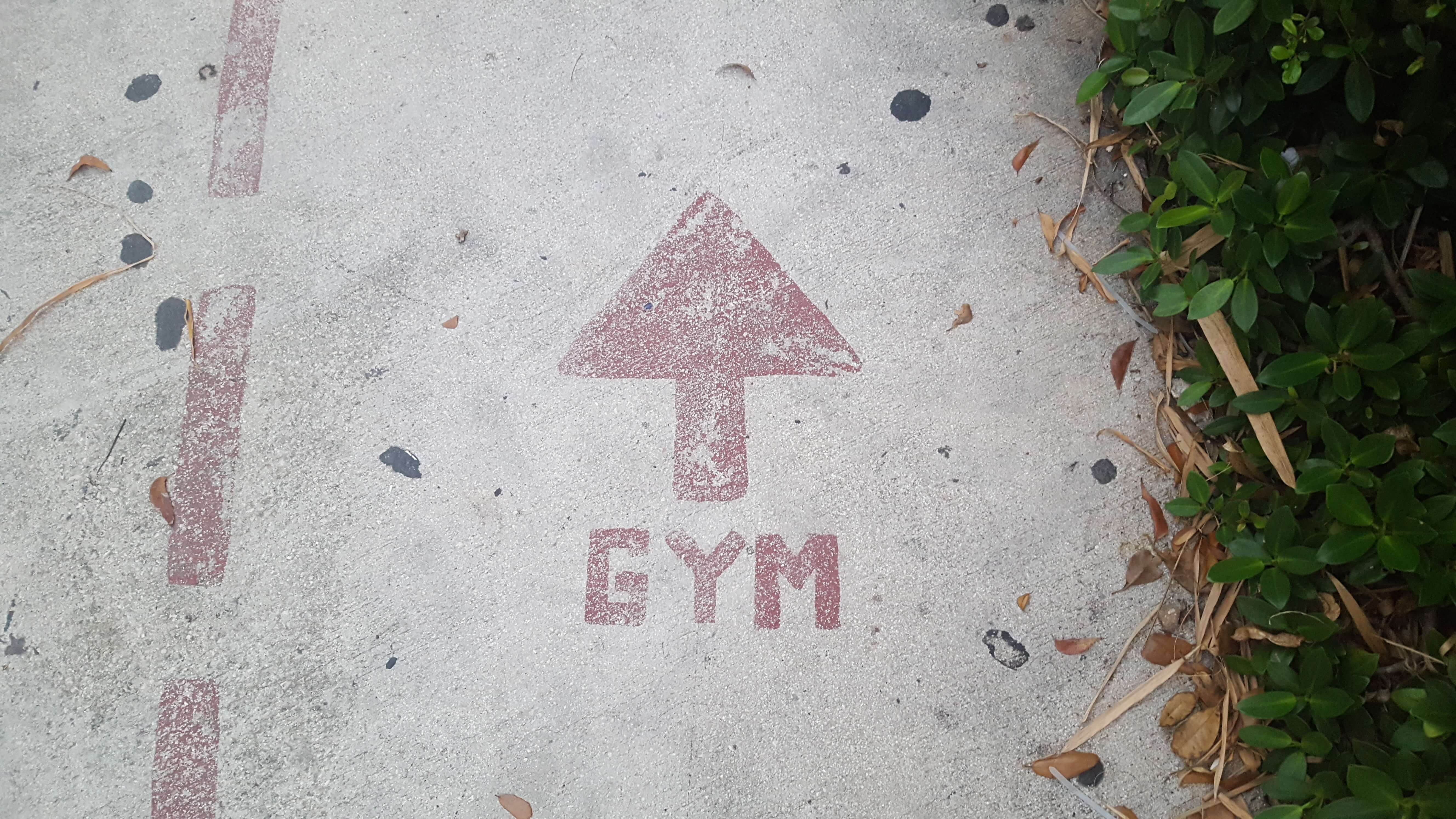 This way to the gym