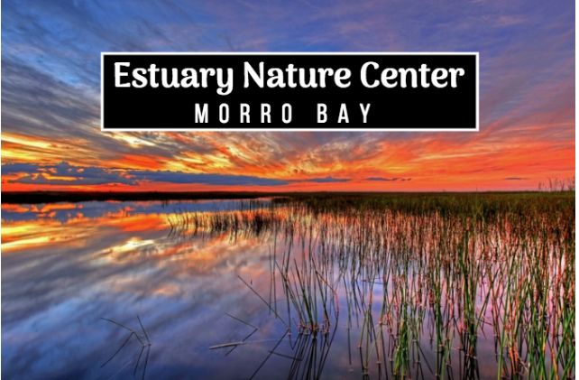 morro bay estuary nature center