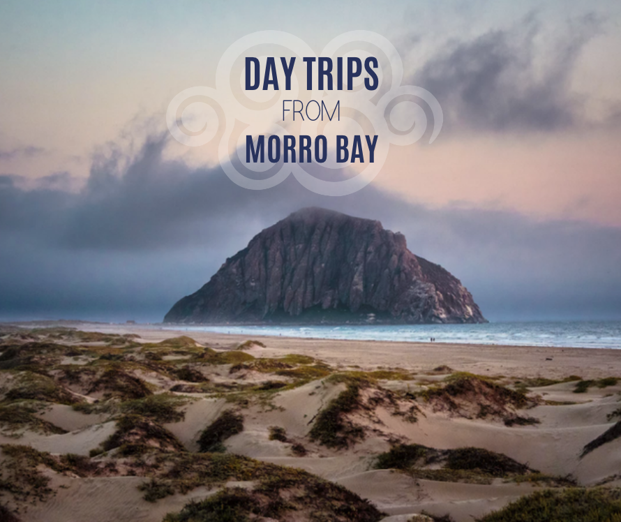 best day trips to morro bay