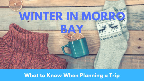 Morro Bay winter