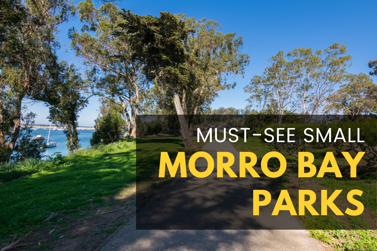 Park in Morro Bay - Must-see Small Morro Bay Parks