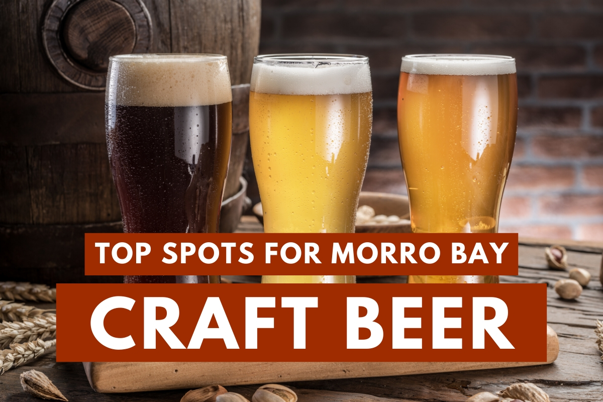 Craft Beers - Top Spots For Morro Bay Craft Beer