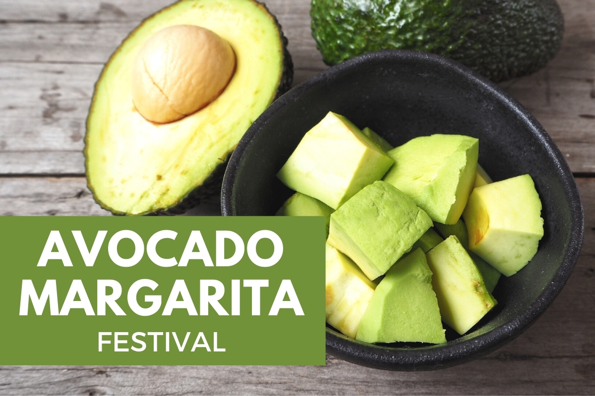 Closeup of an avocado - Avocado Margarita Festival