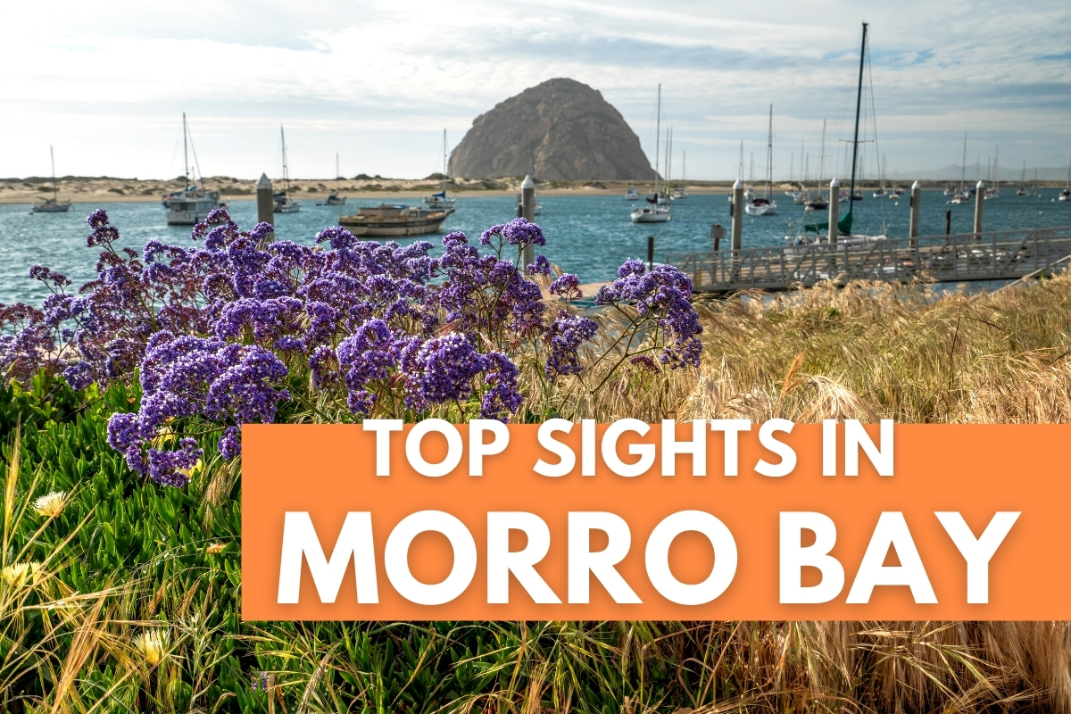 Morro Rock View - Top Sights in Morro Bay