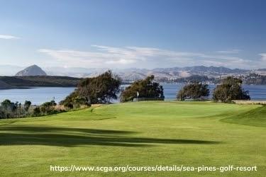 View at Sea Pines Golf Resort