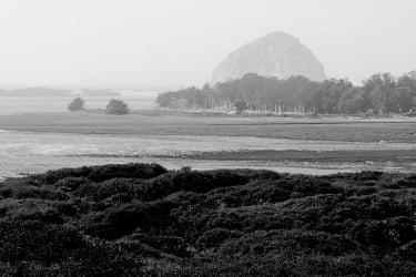 El Moro Elfin Forest with view to the Morro rock
