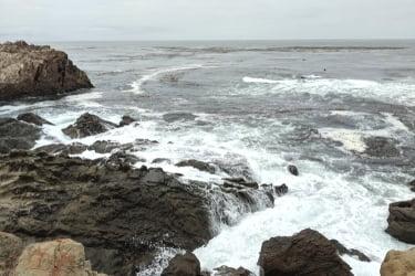 Rocks at Estero Bluffs State Park