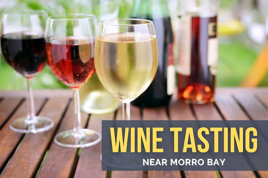 Wine Tasting near Morro Bay - Different types of wines