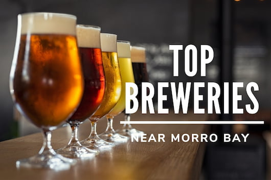 Top Breweries Near Morro Bay