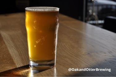 Cup of Beer from Oak and Otter Brewing