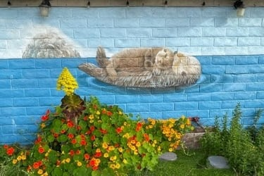 Sea Otter Mother & Baby at Morro Rock Mural