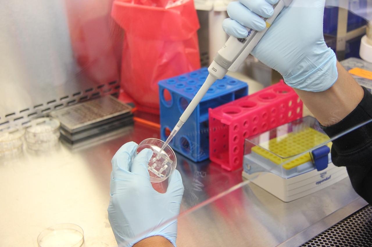 lab samples taken