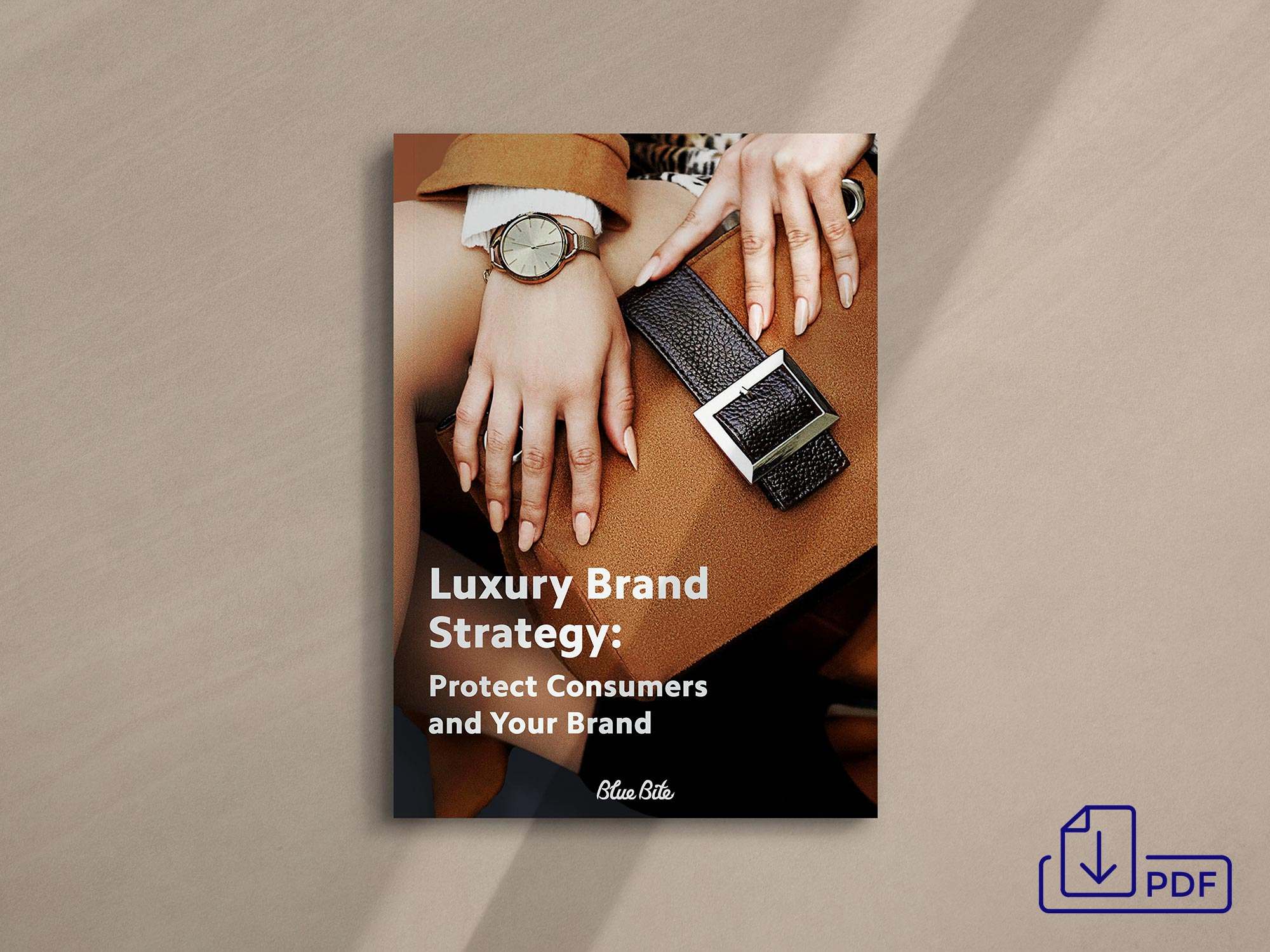 Get the Luxury Brand Strategy PDF