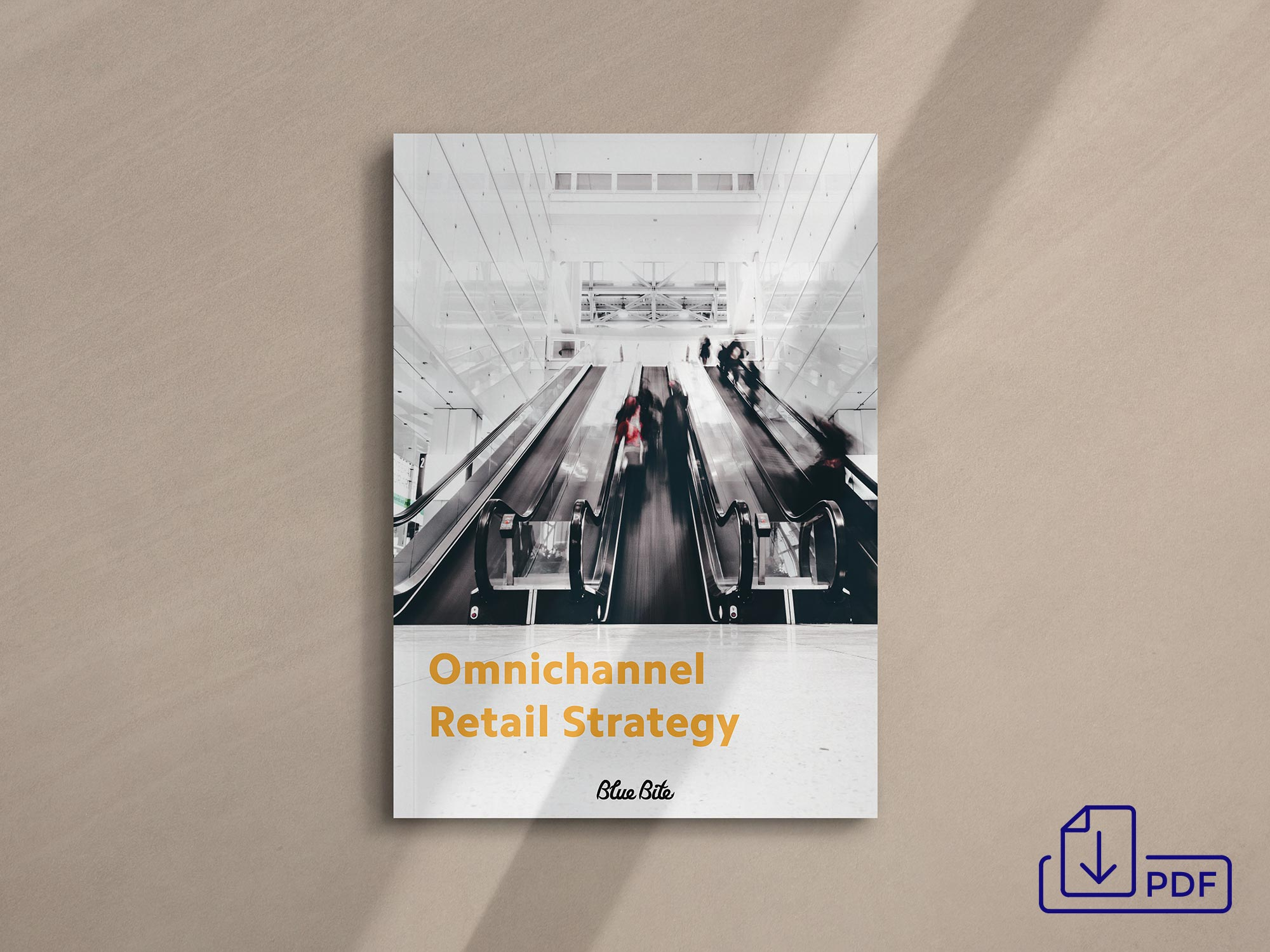 Get the Omnichannel Retail Strategy PDF