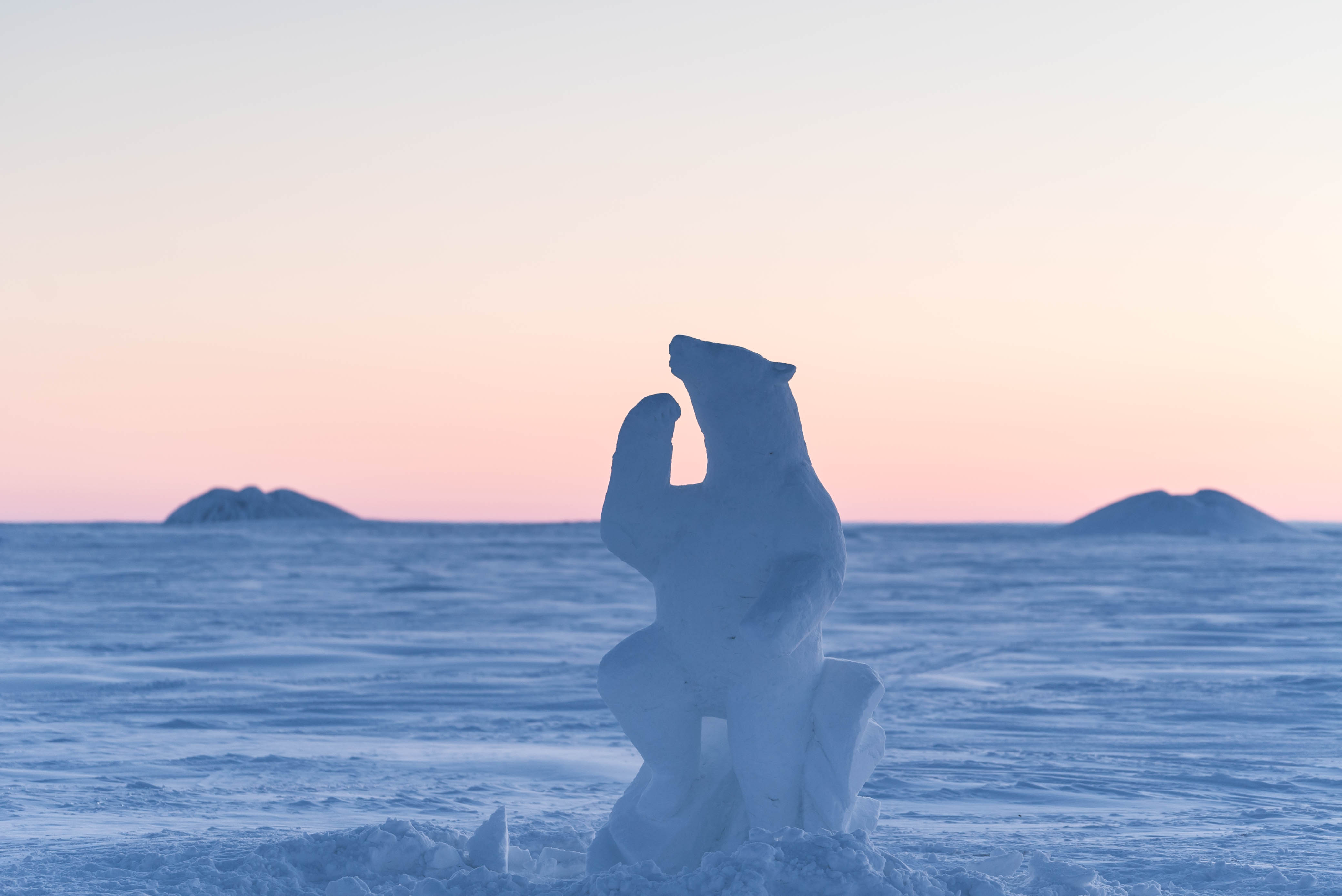 Derrald Taylor polar bear snow carving
