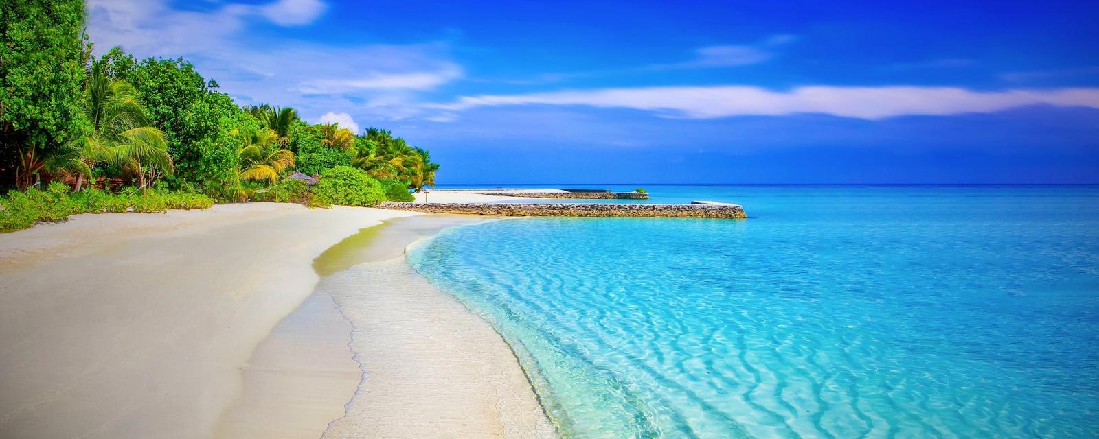 Ocean Landscape / Beach Scene