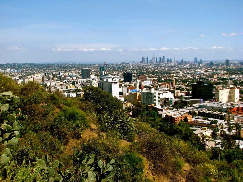 Image result for runyon canyon