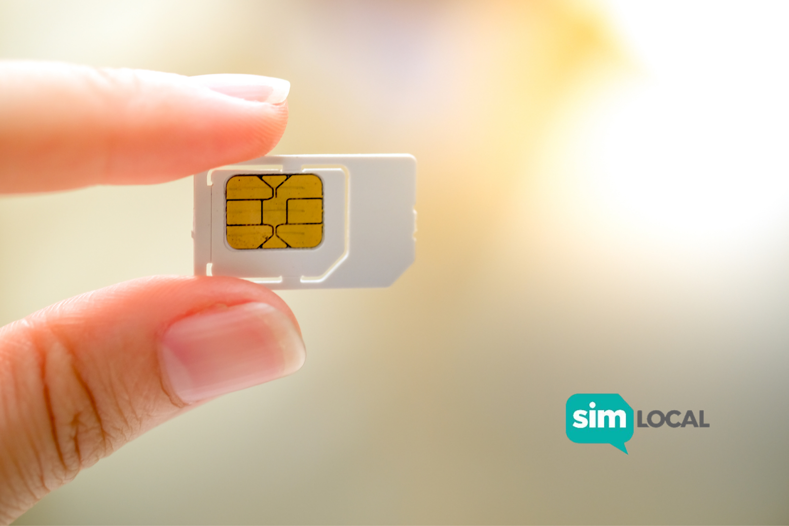 person holding sim card