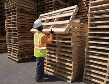 worker getting custom pallets