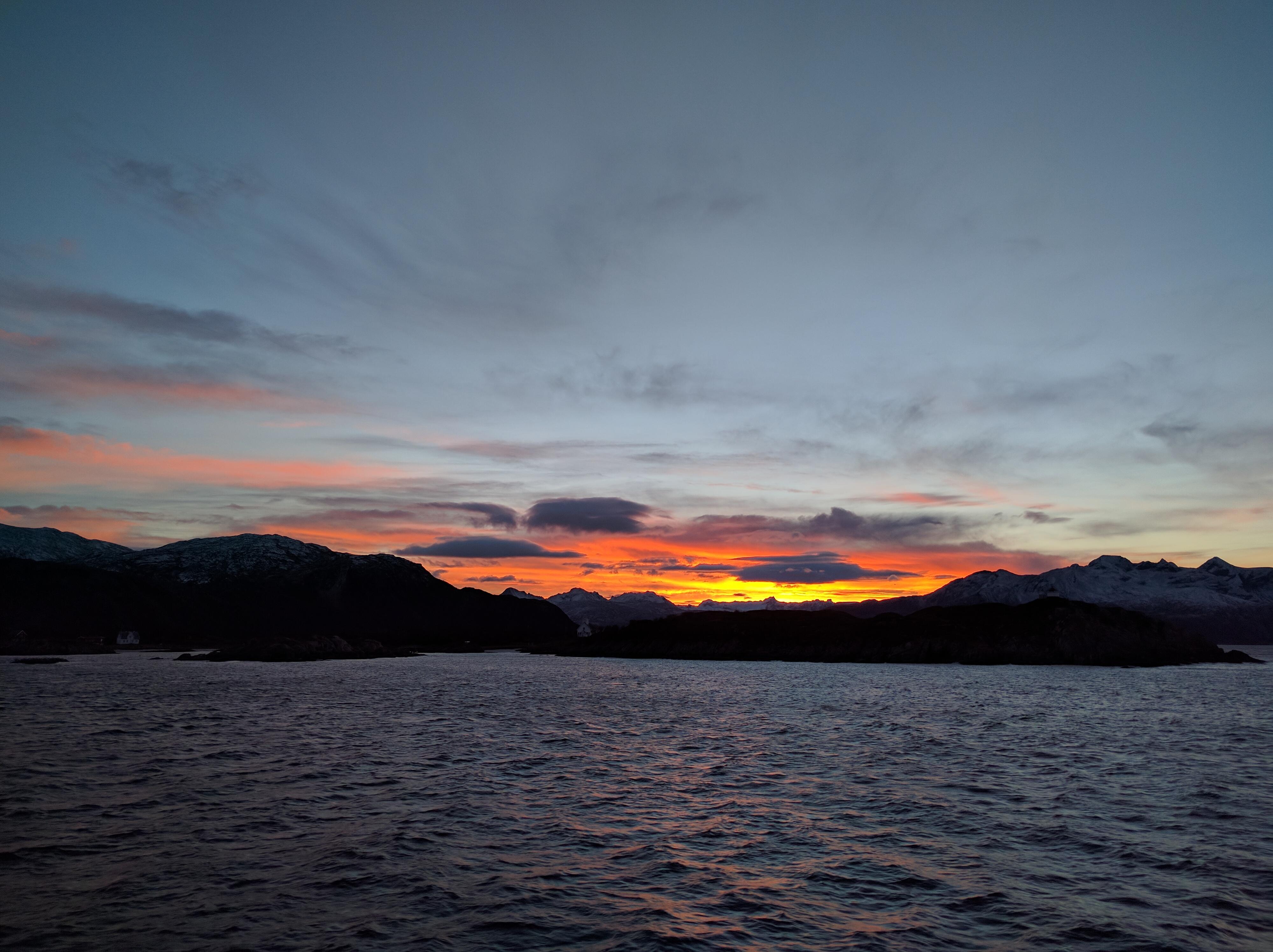 Arktisk Natur Cruise i Tromsø